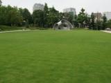 ミッドタウン・ガーデン
